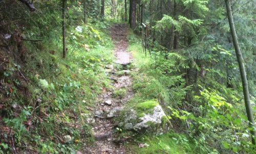 Fußweg zur Wasserfallhütte